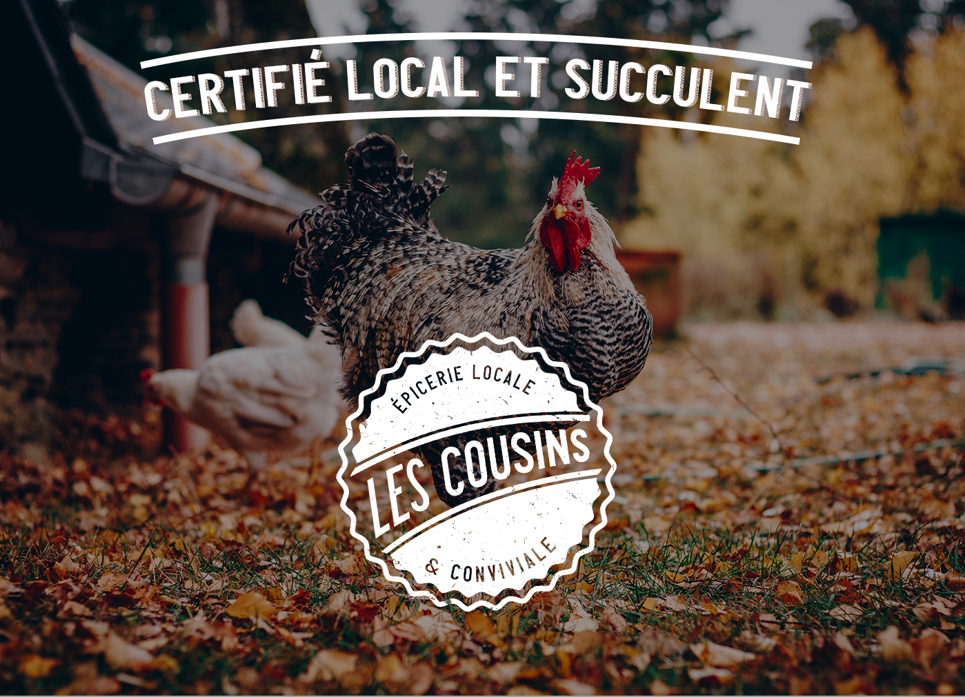 Les Cousins logo visuel - Mathieu Dupuis freelance